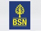 Bank Simpanan Nasional